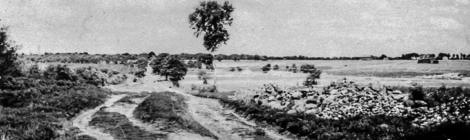 Landschaft einer emsländischen Niederung im Wandel der Zeit