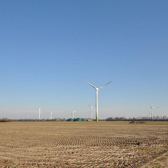 EU Biokraftstoff-Ziele fördern ökologische und soziale Konflikte - Studie belegt massive CO2-Emissionen und Landnutzungsänderungen