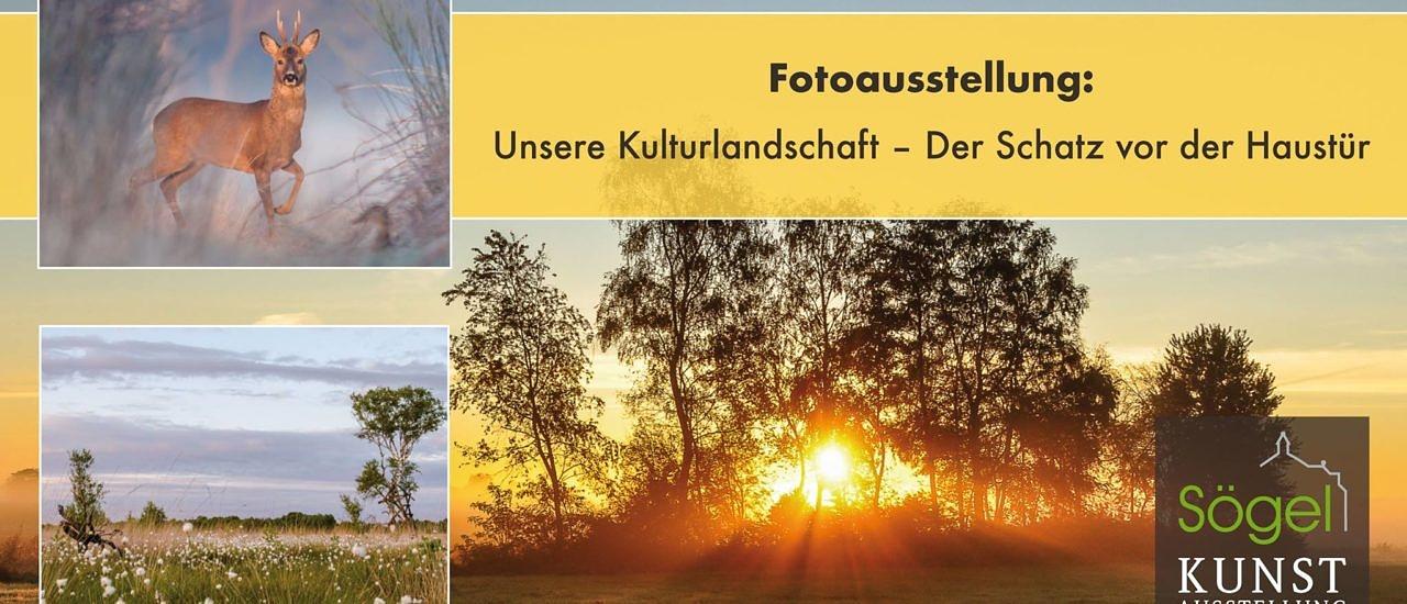 """Ausstellung in Sögel zeigt """"Schatz vor der Haustür"""""""