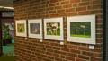 Ausstellung im Kreishaus Ammerland
