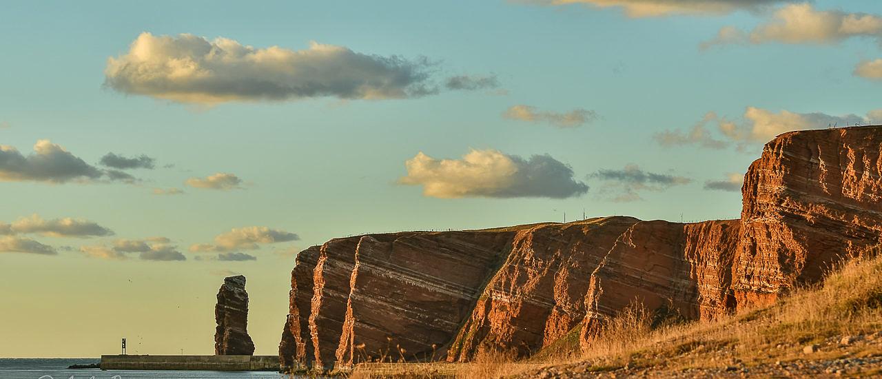 Zum Vogelzug auf Helgoland