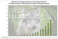 Die Zahl der Wolfsterritorien 2017/2018 in Deutschland - eine Berechnung