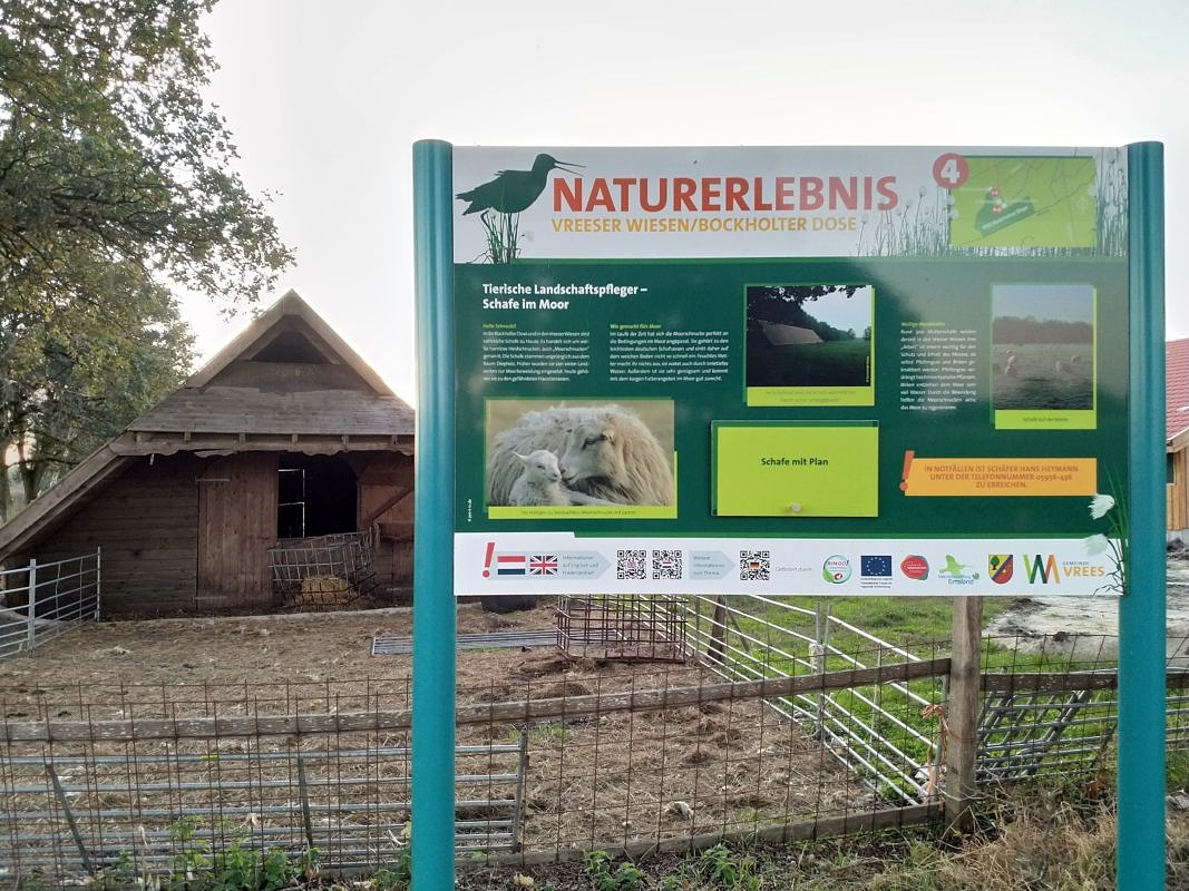 "Schautafeln ""Naturerlebnis Vreeser Wiesen / Bockholter Dose"""